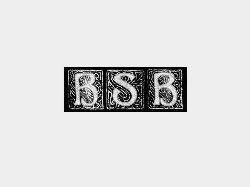 BSB Hamburg